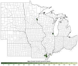 Distribution map of Southern Painted Turtle (Chrysemys dorsalis)