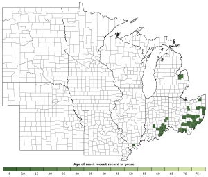 Distribution map of Northern Dusky Salamander (Desmognathus fuscus)