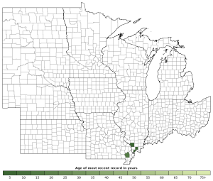 Distribution map of Eastern Mud Turtle (Kinosternon subrubrum)