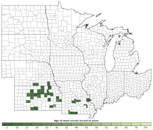 Distribution map of Great Plains Ratsnake (Pantherophis emoryi)