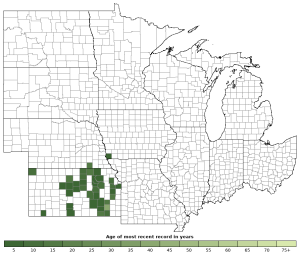 Distribution map of Great Plains Skink (Plestiodon obsoletus)