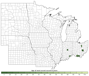 Distribution map of Northern Ravine Salamander (Plethodon electromorphus)