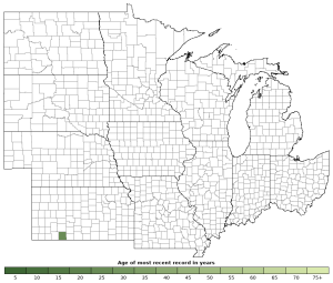 Distribution map of Spotted Chorus Frog (Pseudacris clarkii)