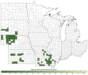 Distribution map of Prairie Lizard (Sceloporus consobrinus)