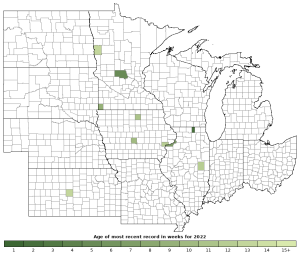 Activity in 2020 of the Plains Garter Snake (Thamnophis radix)